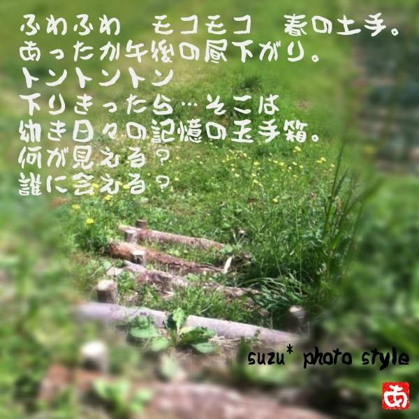 IMG_4675-6.jpg